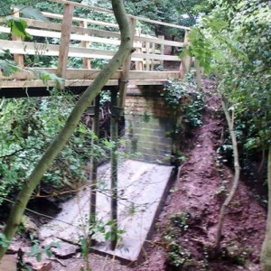 New bridge over Lambley Dumbles (2)
