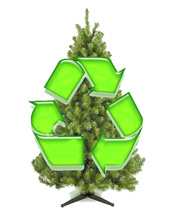 Recycle your Christmas tree this weekend